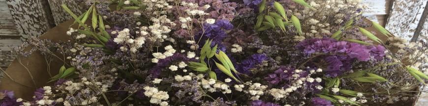 Ramos de flor seca
